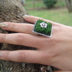 sping rings 005